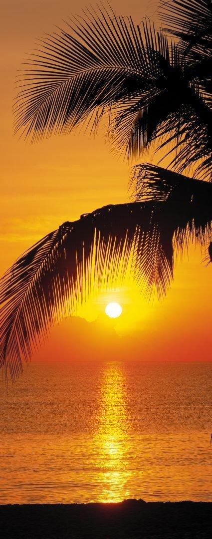 Fototapeta Krajobraz 92x220 2-1255 Plaża Palmy Wschód Słońca Pacyfik Tropiki Morze Wakacje Przyroda Natura