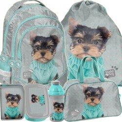 Modny Plecak Szkolny York Pieski dla Dziewczyny [PTH-181]