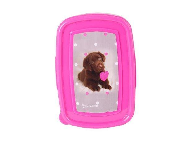 Bidon Śniadaniówka Pies Labrador w Kartoniku dla Dziewczyny
