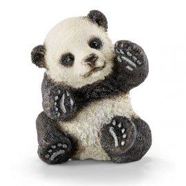 Mała Panda bawiąca się