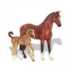 Koń ze źrebakiem Bay Warmblood
