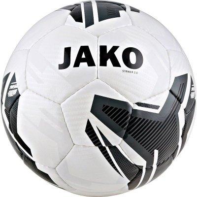 piłka treningowa STRIKER2.0