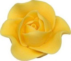 Róża Max 6 szt. żółty
