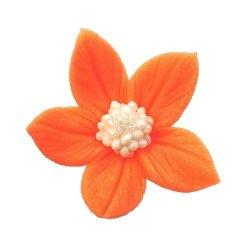 Płomyk pomarańczowy opak. 8 x 10 szt.
