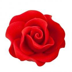 Róża Max 6 szt. czerwona