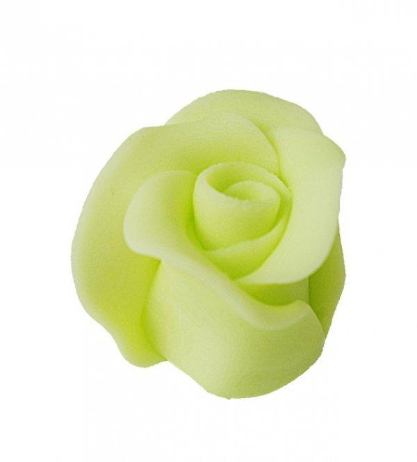 Róża duża 22 szt. pistacjowa