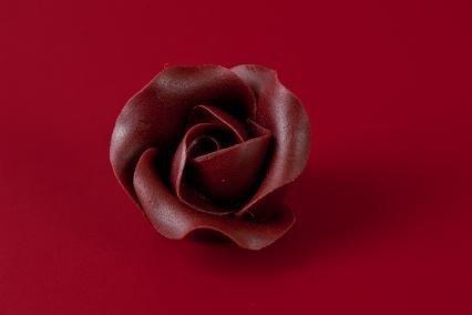 Róża Mini Max 20 szt. czekoladowa