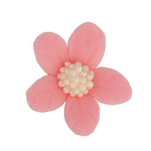 Jaśmin różowy 8 x 10 szt.