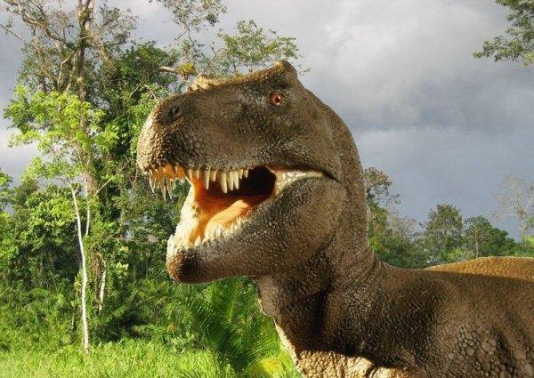 Hokus - opłatek na tort prostokątny Tyranozaur 7