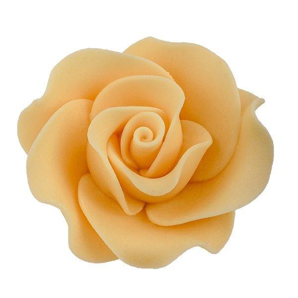 Róża Max 6 szt. ecru