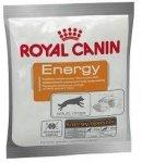 Royal Canin Energy przysmak dla psa 50g