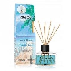 Fragrance Diffuser Caribbean Lagoon, Allvernum