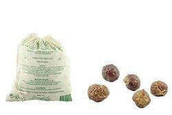 Alepia Organic Wash Nuts, 1kg