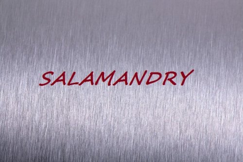 Salamandry
