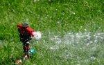 Pompa wody do studni: jaką wybrać?
