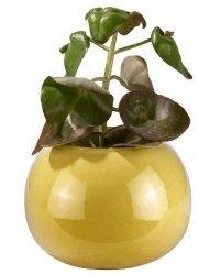 A Simple Mess BIRK Wazon - Doniczka do Kwiatów 27 cm Żółta
