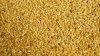 Siemię lniane budwigowe złociste - prezentacja produktu