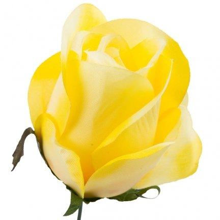 Róża Pąk Żółty [Komplet 12szt]
