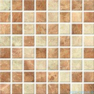 Ceramika Color Aruba mozaika ścienna 25x25