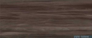 Ceramika Color Venus brown płytka ścienna 25x60