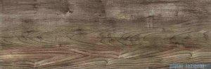 Ceramika Color Amazonia Forest Brazil płytka ścienna 25x75