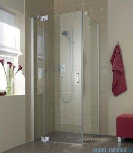 Kermi Filia Xp Drzwi wahadłowe z polem stałym, lewe, szkło przezroczyste KermiClean, profile srebrne 100x200cm FX1WL10020VPK