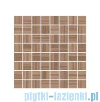 Ceramika Color Sea Shell brown mozaika ścienna 25x25