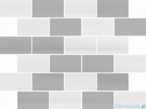 Ceramika Color Scala mozaika ścienna 25x32,5