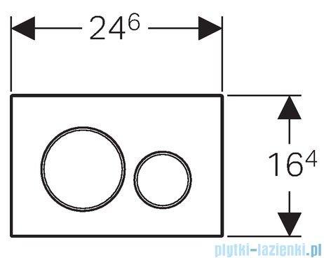 Geberit Sigma20 Przycisk uruchamiający przedni stal nierdzewna/stal nierdzewna/stal nierdzewna 115.889.SN.1