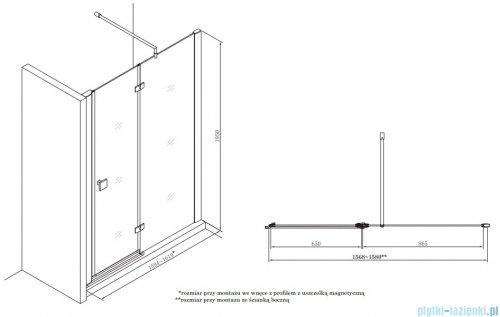 Roca Metropolis drzwi prysznicowe 160cm szkło przejrzyste AMP3416012M