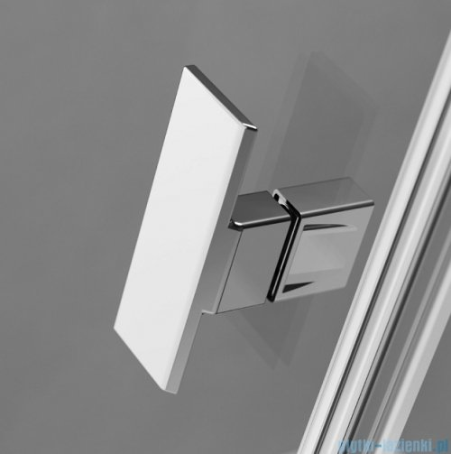 Radaway Nes Kds I Drzwi 120cm lewe szkło przejrzyste 10023120-01-01L