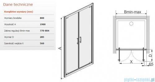Sanplast Tx drzwi skrzydłowe DD/TX5b 80x190 cm przejrzyste 600-271-1920-38-401