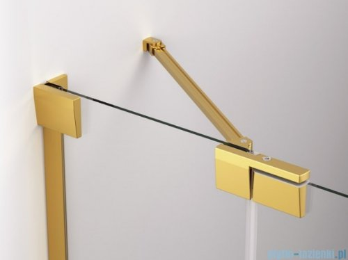 SanSwiss Cadura Gold Line drzwi wahadłowe 120cm jednoczęściowe lewe z polem stałym CA13G1201207