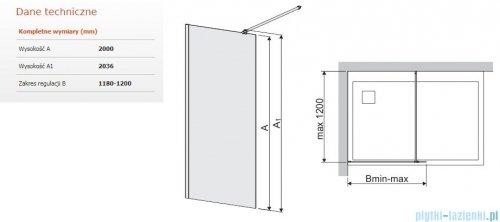 Sanplast Space Wall P/SPACEWALL kabina walk-in 120x200 cm przejrzyste 600-320-2160-42-401