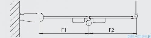 Kermi Diga Wejście narożne,połowa kabiny, lewa, szkło przezroczyste, profile srebrne 120x200cm DI2CL12020VAK