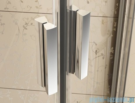 Ravak Blix BLRV2K drzwi prysznicowe 1/2 120cm aluminium grape Anticalc 1XVG0C00ZG