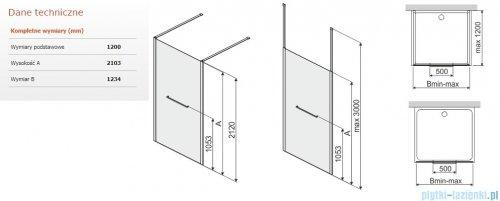 Sanplast Altus PII/ALTIIa kabina walk-in 120x212 cm przejrzyste 600-121-2761-42-401