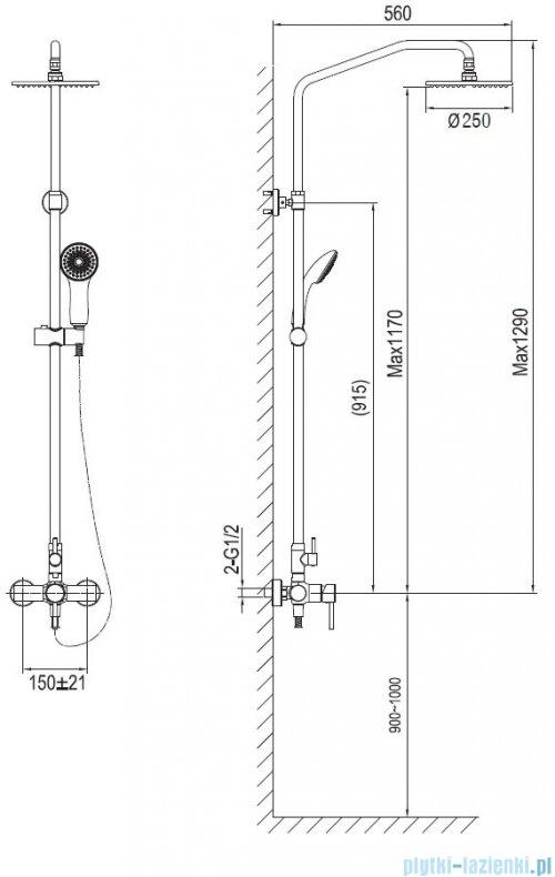 Blue Water Denver zestaw kabinowo-prysznicowy natynkowy złoty DEN-ZKPN.400ZP