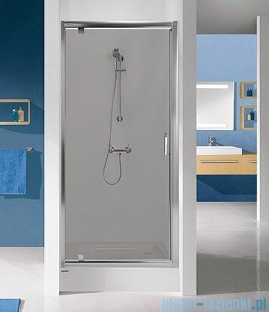 Sanplast Tx drzwi przesuwne DJ/TX5b 80x190 cm przejrzyste 600-271-1030-38-401