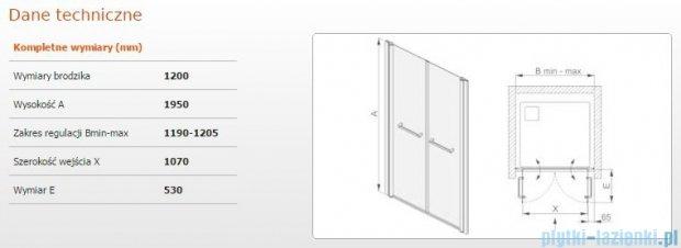 Sanplast drzwi skrzydłowe wahadłowe DD/PRIII 120x195 cm przejrzyste 600-073-0960-38-401
