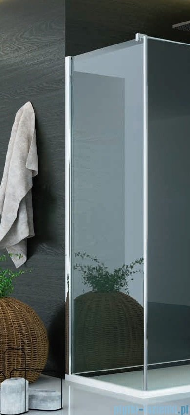 SanSwiss Pur PUDT3P Ścianka boczna 120x200cm Durlux 200 PUDT3P1201022