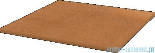 Paradyż Aquarius brown klinkier płytka bazowa 30x30