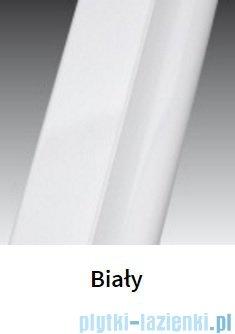 Novellini Drzwi do wnęki z elementem stałym GIADA G+F 144 cm prawe szkło przejrzyste profil biały GIADNGF144D-1A