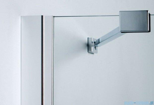 Sanplast drzwi skrzydłowe DJ2/FREE-100 100x195 cm przejrzyste 600-260-0340-42-401