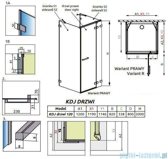 Radaway Euphoria KDJ+S Drzwi prysznicowe 120 prawe szkło przejrzyste 383024-01R