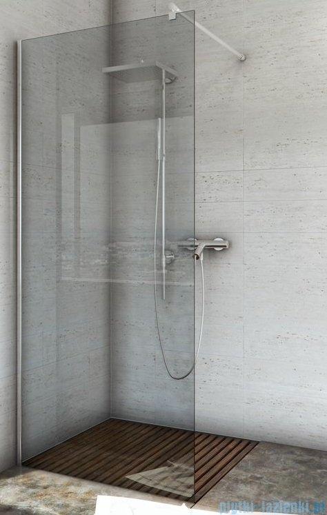 Sea Horse Easy In ścianka prysznicowa typu Walk In  100 cm  szkło: Grafitowe BK251G10