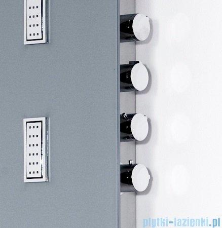 Sanplast Space Line panel prysznicowy PP/SPACE-150 31x150 cm jasnoszary 631-100-0030-55-000
