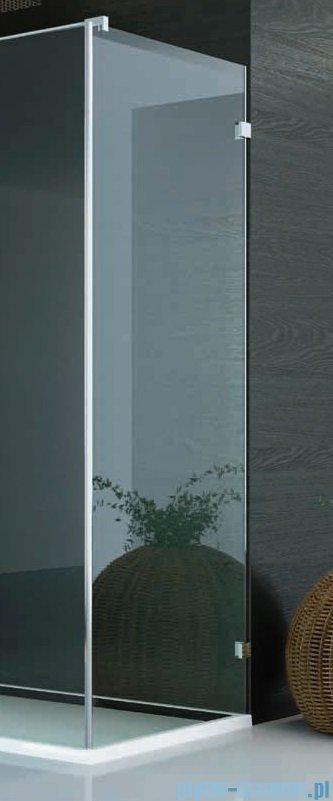 SanSwiss PUR PU31 Ścianka boczna wymiary specjalne 30-100/do 200cm cieniowane czarne PURDT3SM21055