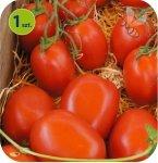 Pomidor szczepiony Conqueror