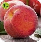 Brzoskwinia Fruit Me® Peach Me Red 1 sztuka